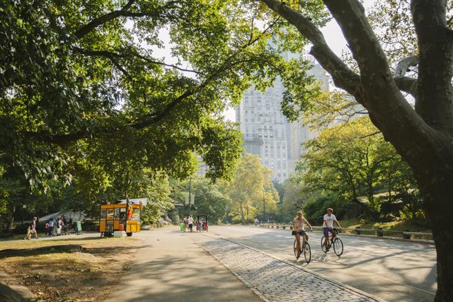 Dos ciclistas en Central Park
