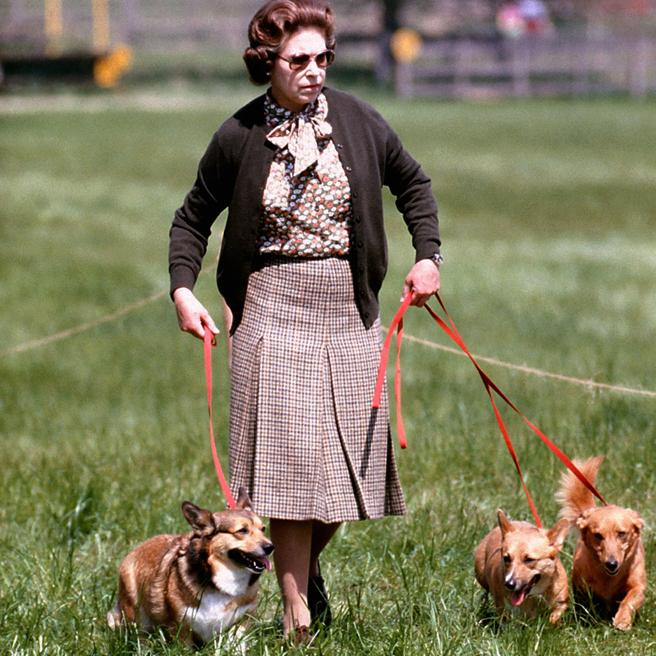 Imagen de 1980 de la reina paseando con sus corgis