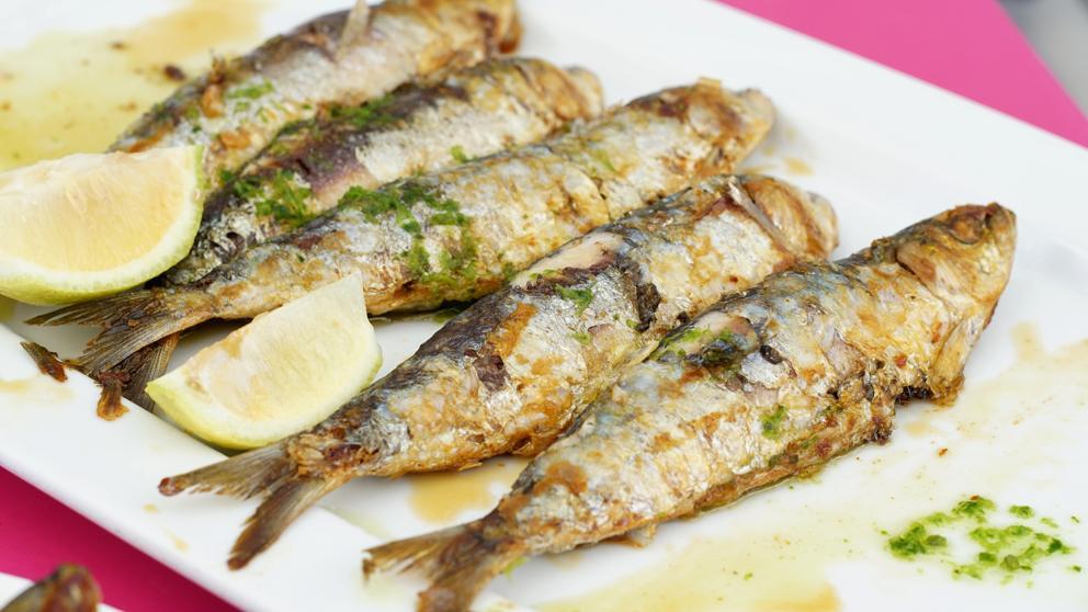 Resultado de imagen para sardina