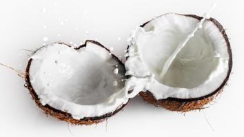 Resultado de imagen para coco fruta recetas