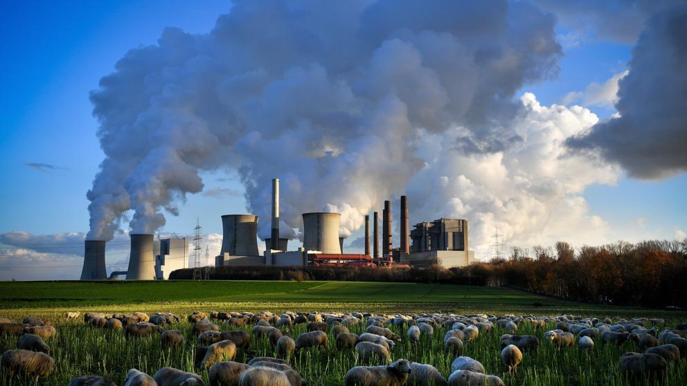 Las emisiones de CO2 alcanzarán un nivel récord este año