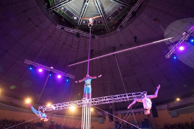 'Ladder', con Andrei Volozhanin, presenta equilibrios en escaleras fijas