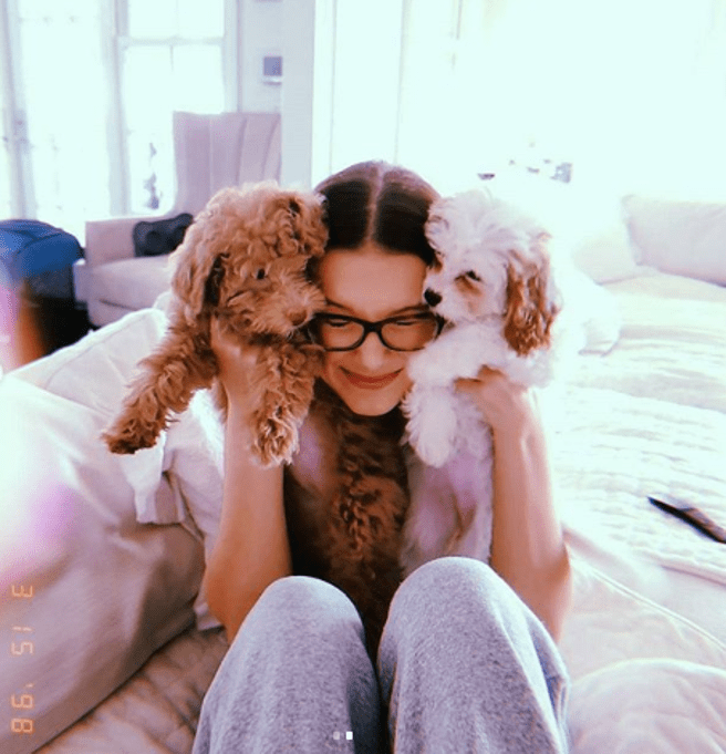 Millie Bobby Brown and his pets