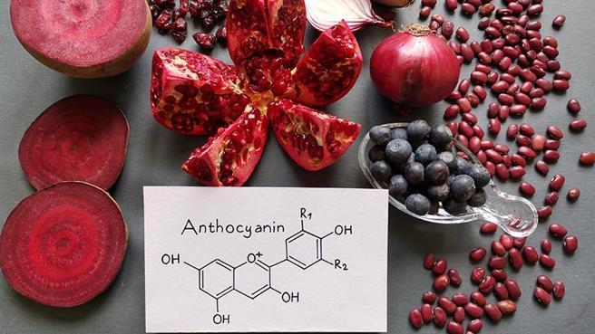 Alimentos que contienen antocianinas y antioxidantes: remolacha, arándano, arándano, cebolla roja, granada, ...