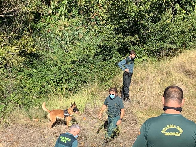 La Guardia Civil incorpora perros rastreadores en la batida