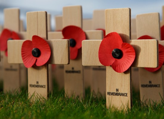 remembrance-day-11300115265SYm