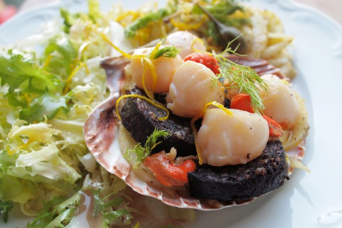 Pan-Fried Scallops with Black Pudding & Warm Fennel Salad