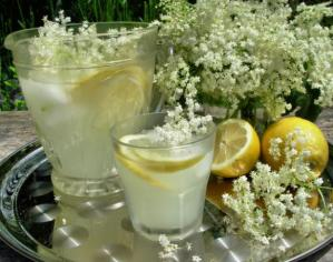 Old Fashioned English Elderflower Cordial