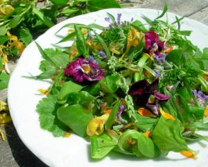 Elizabethan Herb & Flower Salad with Honey Dressing
