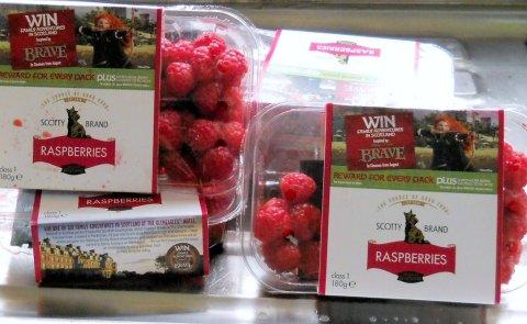 Scotty Brand Raspberries