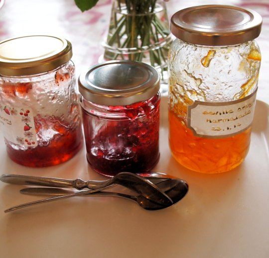 Damson Day with Vivien Lloyd: Autumn Preserves Workshop in an Old Somerset Farmhouse
