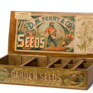 Giveaway: Win one of three x £30 worth of Seeds (flowers, herbs or vegetables) of your choice