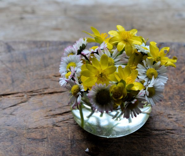 A wee posy of spring flowers.....