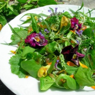 Elizabethan Salad with Flowers