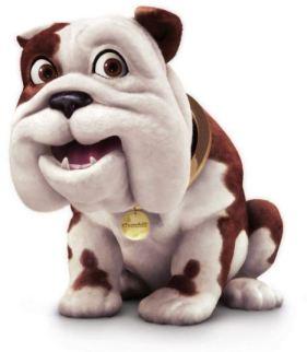 Churchill the Insurance Dog