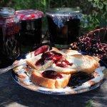 Elderberries, Apples, Autumn, Harvest, Preserves, Fruit, Chutney, Jam, Jelly, Karen S Burns-Booth, Lavender and Lovage, Hedgerow Harvest
