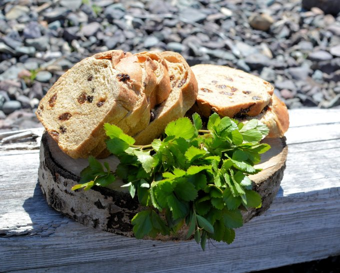 Home-made Raisin Bread and Scotch Lovage