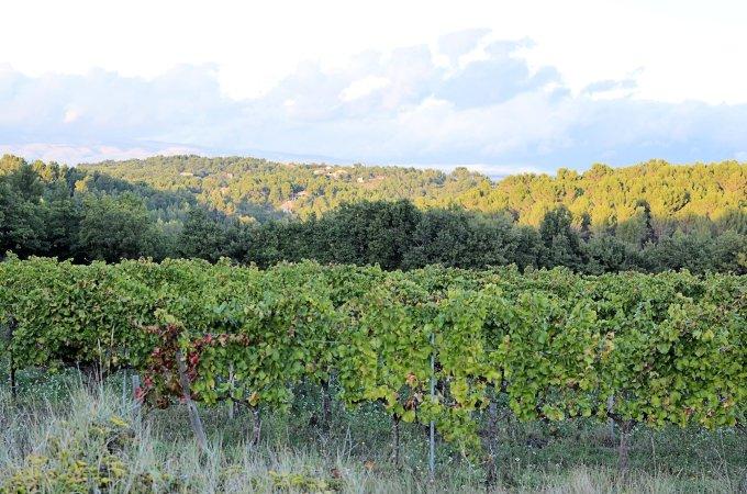 Valley Vaucluse