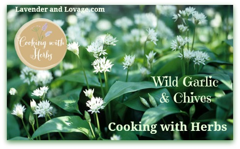 NEW May Cooking with Herbs Linky Party and April Recipe Round-Up