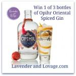 Opihr_G&T_Cutout_Orange_Swirl glass_bottle