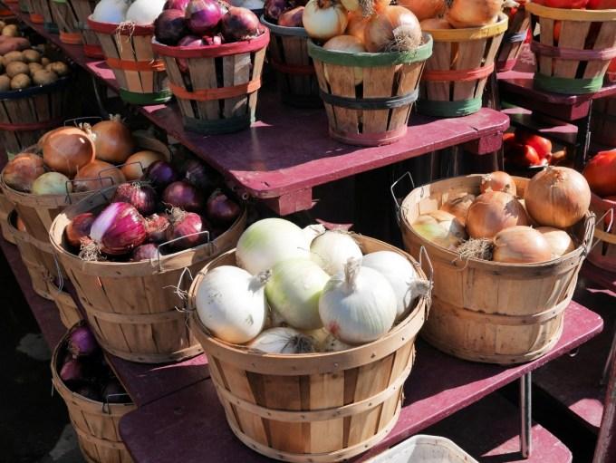 Onions Jean Talon Market