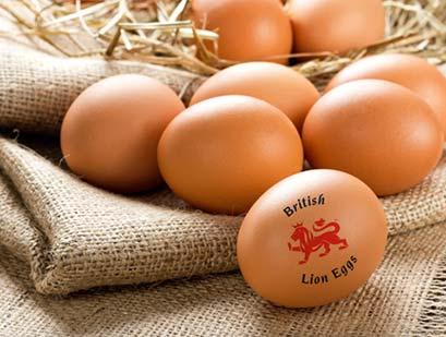 British-lion-Eggs