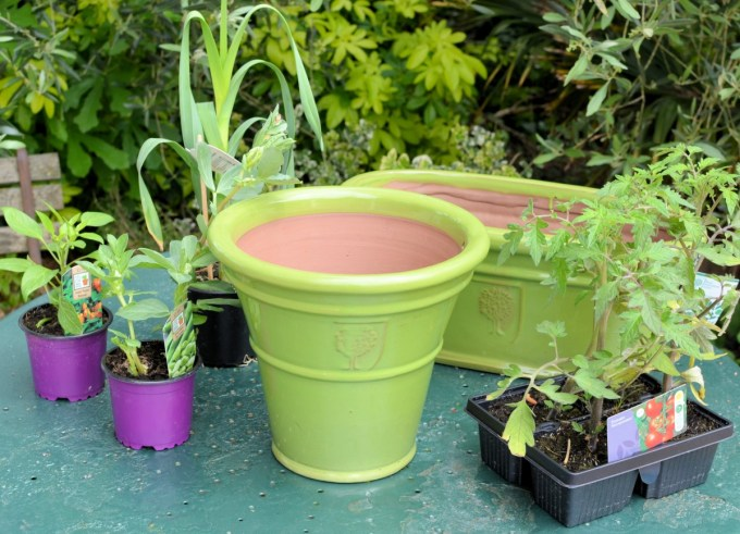 """The Lavender & Lovage """"Grow Your Own"""" Kitchen Garden"""
