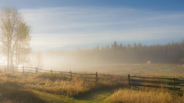 autumn-mists