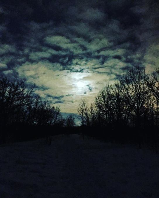"A Full ""Snow Moon"" at FortWhyte Alive"
