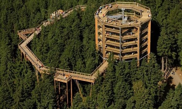Lipno Tree Top Walk