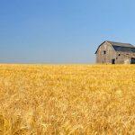 Barley Barn Prairies