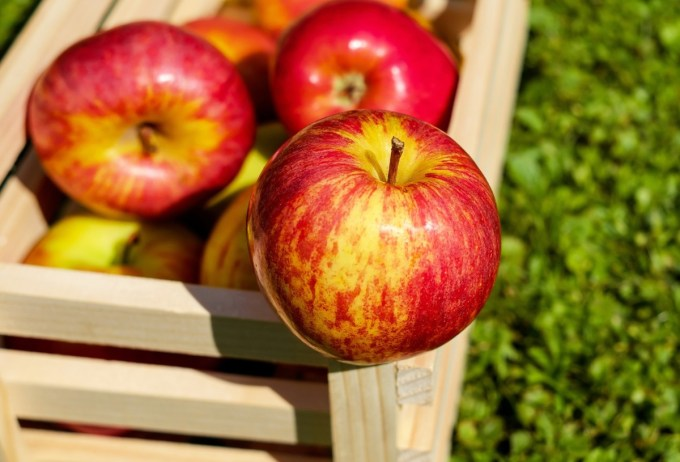 ROYAL GALA Description: Britain's favourite apple with stripy red skin, a crisp bite and delivering a wonderfully sweet flavour. Season: September to May Growing Location: South East, South, South West, East Midlands, West Midlands, East Anglia