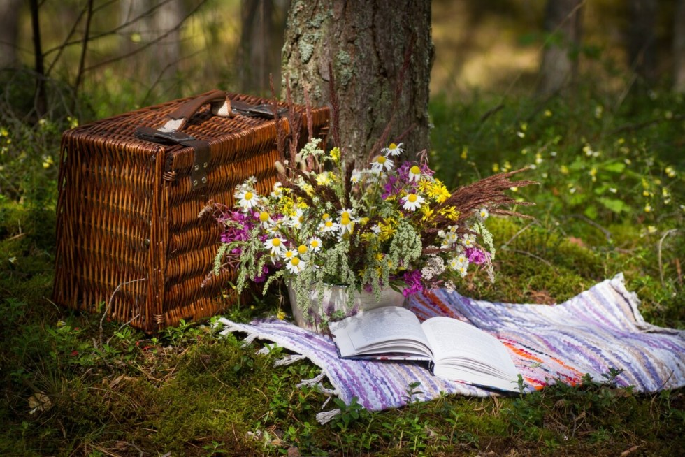 National Picnic Month of July