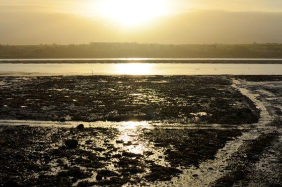 Anglesey Sea Salt Halen Mon