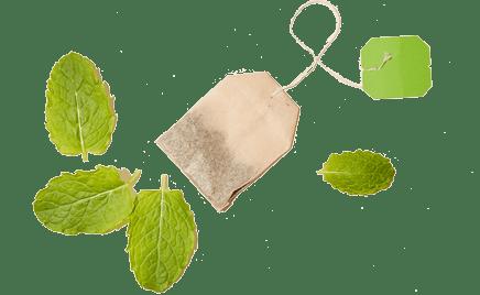 spearmint-tea