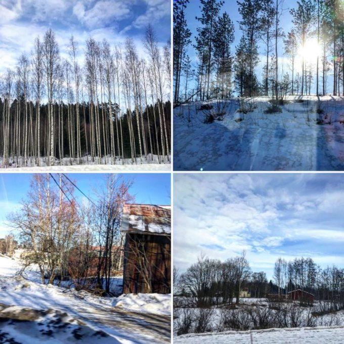 Winter wonderland in Finland