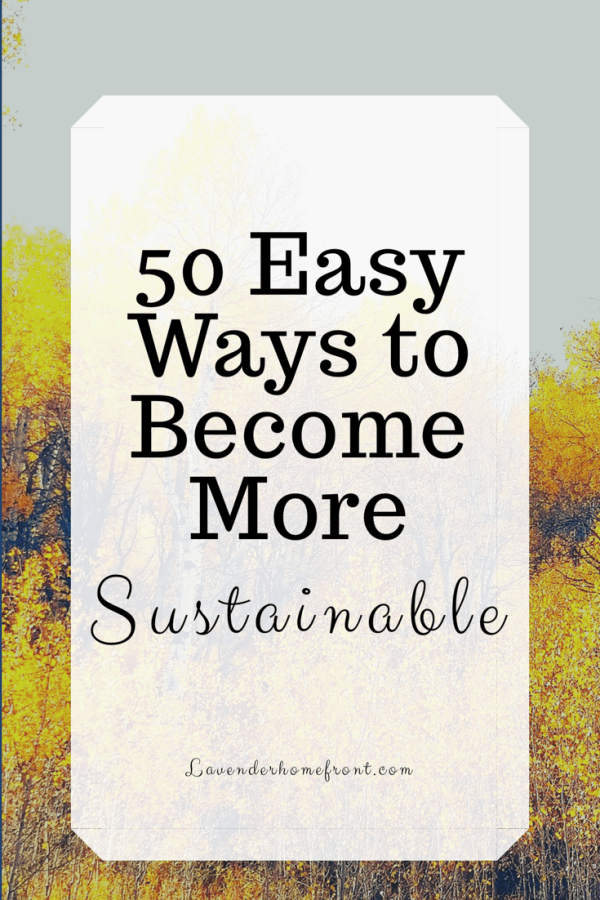 50 East Ways to be Sustainable