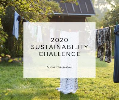 go green and eco-friendly with the great sustainability challenge