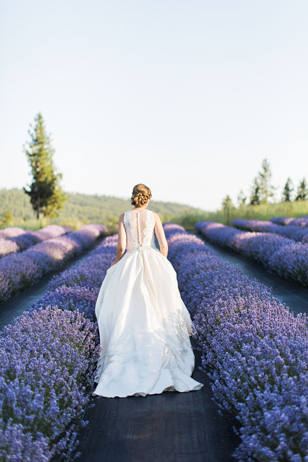 Bride Walking Through Lavener Aisle