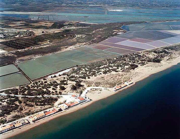 Playa de El Pinet, Elche | laverdad.es