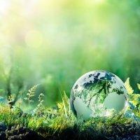 Il giusto rapporto tra l'uomo e la natura - Laudato si' (3)