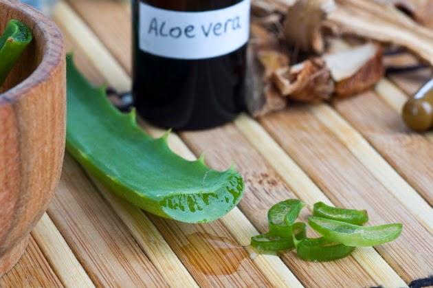 Aloe Vera para tratar la diabetes