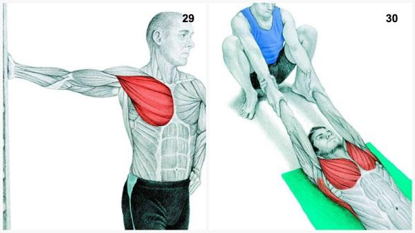 estiramientos musculares pecho