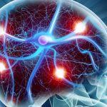 Epilepsia, ¿Cómo se debe actuar en caso de convulsiones?