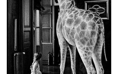 la petite fille et la girafe
