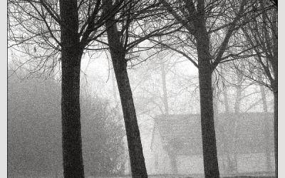 La Maison dans le Brouillard