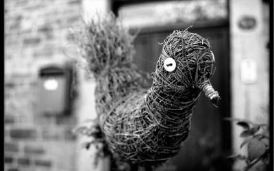Oiseau de paille