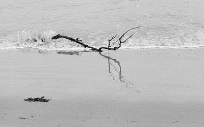 Sur la plage abandonnés…
