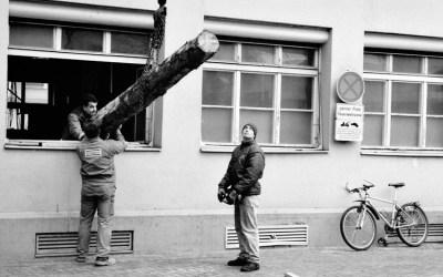 Le tronc volant