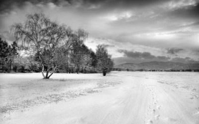Chemin d'hiver IV